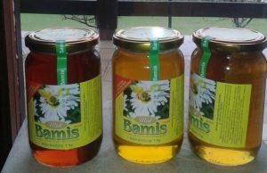 Domaći prirodni med BAMIS