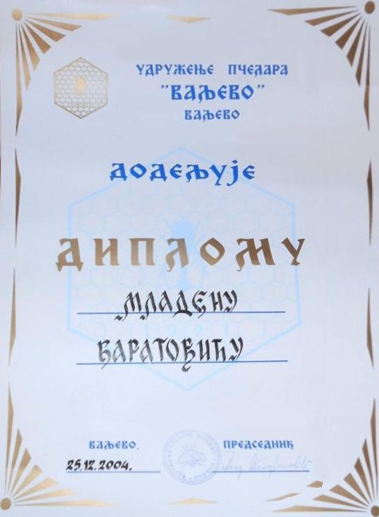 Diploma Valjevo 2004