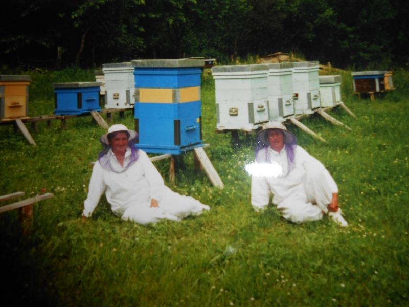 U pčelinjaku